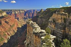 The highest point at the Grand Canyon is located at the lookout tower near the North Rim's main entrance with a elevation of 9,165 feet. This shot is of the Transept on the North Rim of the Grand Canyon.