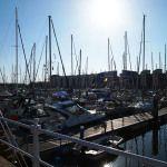 Yachts Yachts, Seaside