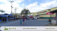 Learn Spanish in the best place in mexico and study at the best school Instituto Chac-Mool Spanish Schools  http://chac-mool.com/  1 (480) 338 5147 or 1 (777) 317 2555