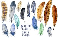 Watercolor feather clipart set