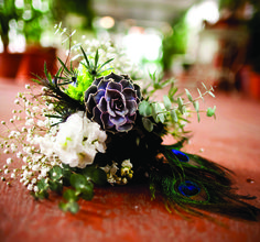 Succulents, peacock feathers, and baby's breath. Flowers by Sean Oviatt. ZumaPhoto. Utah Bride & Groom magazine.