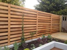 modern trellis over fence design - Google Search