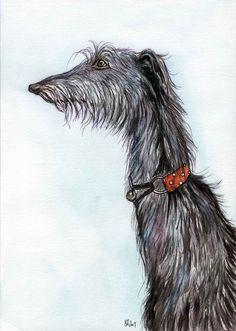 Deerhound Dog Print - Elle J. Wilson at etsy