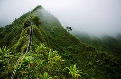 Hawaii, Oahu-- Stairway to Heaven