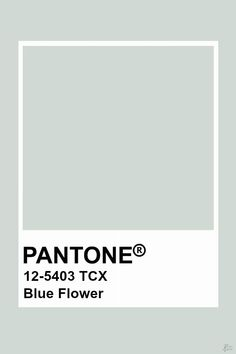 tissue of this color is green and gray. The value of this color is light. The chrome of this color is low and the saturation is also low. Pantone Swatches, Color Swatches, Pantone Colour Palettes, Pantone Color, Colour Pallette, Colour Schemes, Design Lounge, Colour Board, Home And Deco