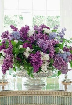 Lilacs my favorite fragrance of Spring.  I have 3 trees and the fragrance is so amazing.