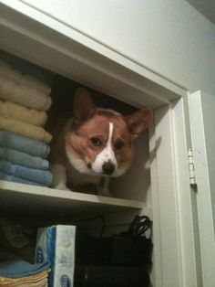 I see we're taking this Hide and Seek thing to new levels.