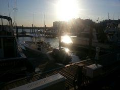 Sunset at Sage marina New Haven