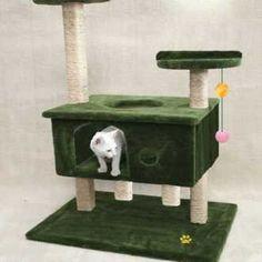 Troca Brinquedo para Gatos - trocar Animais e Plantas usados