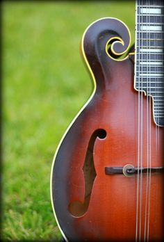 F-Style Mandolin #Mandolin #Mandola #Mandocello