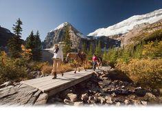 Banff Lake Loise