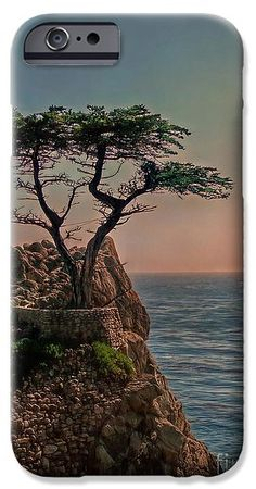 Photogenic Tree IPhone 6s Case by Hanny Heim , Snowbird Photography #tree #california #ocean