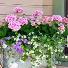 Lawn and Garden Tools Basics Gorgeous Spring Planter Ideas 9 Container Flowers, Container Plants, Container Gardening, Front Porch Flowers, Window Box Flowers, Window Boxes, Decoration Plante, Spring Plants, Spring Garden