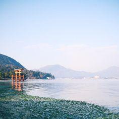 Ikutsushima Shrine, Miyajima Island, Hiroshima Bay, Japan. Photo courtesy of akhan312 on Instagram.