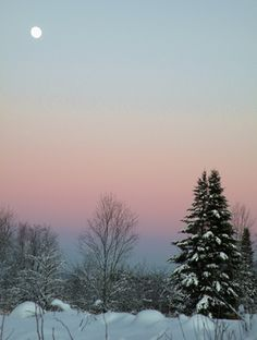 Littleton, NH. Classic NH pink/blue winter sky.