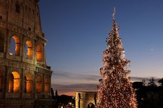 Christmas in Rome by Photos by Enzo D., via Flickr