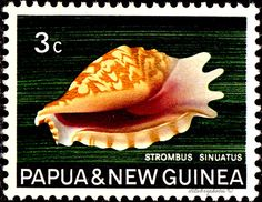 Papua New Guinea.  SHELL. CRESTED STROMB. Scott 266  A58, Issued 1968 Oct 30, 3. /ldb.