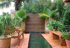 Não fosse o barulho da água, a fonte seria uma surpresa no jardim, tamanha a variedade de vegetação que a esconde.