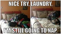 I sleep with my laundry all the time