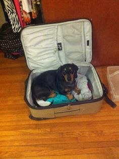 I'm coming too, right Momma?