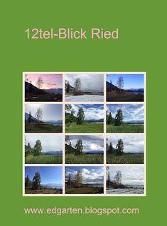 12tel Blick 2017 ins Ried vom Januar bis April Photos, Sunrise, January
