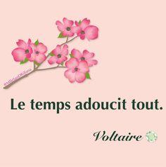 Le temps adoucit tout. Voltaire