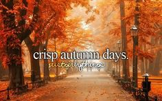 Autumn, my favourite season