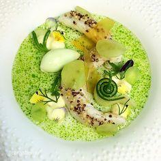 "#finestfood #finedining #food #foodporn #gourmet #instagramfood #chef #foodart #lovefood #artofplating #instafood #yummy #foodpic #photooftheday #instagourmet #dinner #lunch #dessert #instacool #taste #art #goodeats #gastronomy #love #luxury #cook #cooking #foodgasm #instagood  #fishfriday Revisit: By @christianbau ""Langoustine (raw, but flamed) buttermilk (-Dashi) / cucumber / dill oil"""