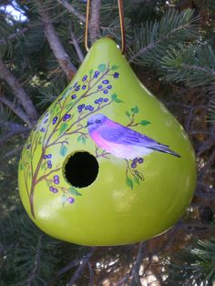 Hand painted gourd birdhouse.