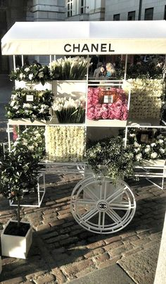 #chanel #flowers #весна