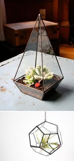 recycled glass terrarium!