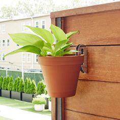Macrame Hanging Planter, Hanging Flower Pots, Hanging Planters, All Plants, Potted Plants, Indoor Plants, Indoor Plant Wall, Potted Flowers, Plant Pots