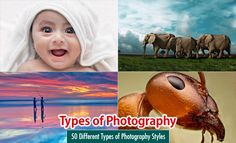 TYPES of Photography with 2-3 image examples for each type! Have students review, select their favorite type and tell the class WHY, then research to locate another Photographer who practices that type of Photography.