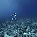 Ocean Gravity: Spectacular Footage of Freediver Guillaume Nery Flying through Swift Ocean Currents North of Tahiti