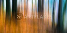 """""""Wald Impression Orange"""" Photography by Thomas Joekel posters, art prints, canvas prints, greeting cards or gallery prints. Find more Photography art prints and posters in the ARTFLAKES shop. Canvas Prints, Art Prints, Woods, Art Photography, Greeting Cards, Trees, Orange, Gallery, Poster"""