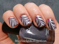 zebra print and feathers