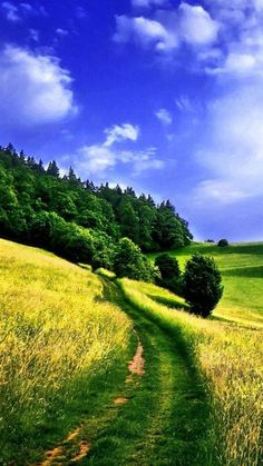 iPhone Nature Wallpapers, Images, Photos, Pictures & Pics #iPhone #nature #wallpapers