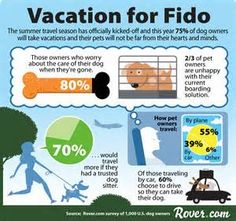 Vacation for Fido