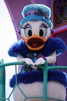 fashionable Daisy Duck