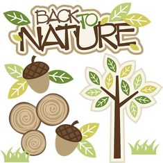 Back To Nature - SVG files for Scrapbooking