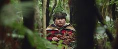 Hunt for the Wilderpeople | FilmGrab