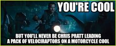 Jurassic World . Chris Pratt as Owen Grady . You're cool but you'll never be Chris Pratt leading a pack of Velociraptors on a motorcycle cool! Jurrassic Park, Funny Memes, Jokes, Hilarious, Jurassic Park World, Jurassic World Chris Pratt, Fandoms, Good Movies, I Movie