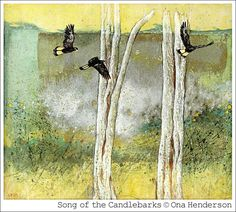 'Song of the Candlebarks' © Ona Henderson... our misty silver mornings in Autumn, with white gums & black cockatoos♥