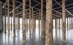 """un bosque en Mies sin """"FUENTE MÁGICA""""... en... http://www.santiagodemolina.com/2014/12/fuente-magica.html"""