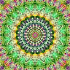 Mandala Patchwork Poster von Christine Bässler