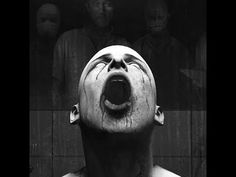 The Russian Sleep Experiment: Live from Siberia (or Amazon)