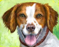 Brittany Spaniel Dog Art Print by Dottie Dracos 12x15, light green | LarkStudios - Print on ArtFire