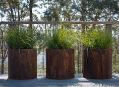 pots with lomandra I'm tempted to try this indoors. Simplicity and series makes it modern. steel pipe pots with lomandraI'm tempted to try this indoors. Simplicity and series makes it modern. steel pipe pots with lomandra Container Plants, Container Gardening, Garden Planters, Planter Pots, Lomandra, Corten Steel Planters, Pot Plante, Plantation, Home Living