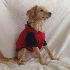 Sudadera perro roja y azul, camiseta, ropa deportiva. Ropa perro. Diseño exclusivo de Mucka Pets. de MuckaPets en Etsy