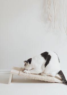 diy cat scratcher | almost makes perfect